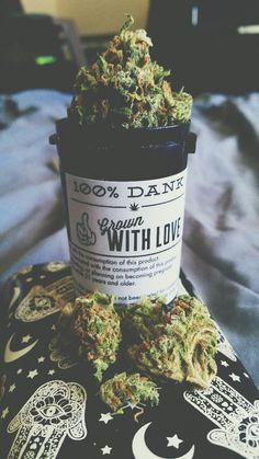 Amor en forma de hierba