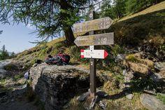 Da Castello di Pontechianale al rifugio Bagnour, attraverso il Bosco dell'Allevè…