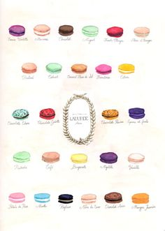 macarons- Love this place! I bring back some each time I go to France! Wish I could find them this good in the USA.