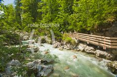 im Zauberwald an der Ramsauer Ache - im Nationalpark Berchtesgadener Land - Bayern - roha-fotothek
