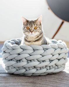 Click The Pict For Detail Knitted Pet Bed Dog Cat Bed Puppy Pillow House Soft Warm Dog House Mat Mini Puppy dog Beds Comforta Pet Beds, Dog Bed, Vinil Wallpaper, Cat Wallpaper, Warm Dog House, Diy Cat Bed, What Cat, Knitted Cat, Photo Chat