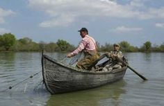 pescuit_delta_dunarii Catfish And Carp, Danube Delta, Native Country, Romania, Fishing, Places To Visit, Boat, Photos, Forests