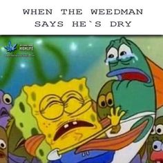 When the weed man out of weed  #spongebob #weed #stonerhumor #funny #stoned #weedman #cannabis #medical #humor #funny