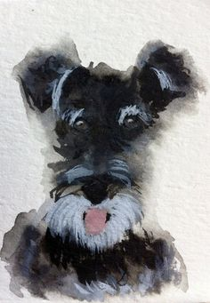 Schnauzer ... My daughter has two miniture schnauzers . They r great dogs . Very smart .