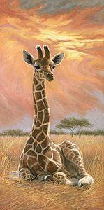 Giraffe Painting - Newborn Giraffe by Lucie Bilodeau