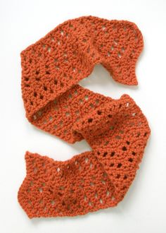Lacy Pumpkin Scarf -- Personally, I don't care for the pumpkin, but I love the lacy.  I'm glad yarn comes in different colors!