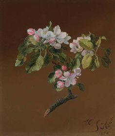 Spray of Apple Blossoms, Martin Johnson Heade. American Hudson River School Painter (1819 - 1904)