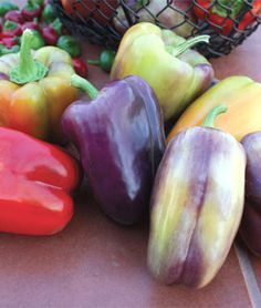 These were stunning last year PinotNoir Peppers. Start purple and end orange WOW