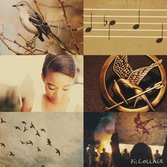 The Mockingjay. This is beautiful