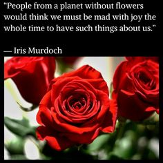"""""""People from a planet without flowers would think we must be mad with joy the whole time to have such things about us.""""  ― Iris Murdoch"""