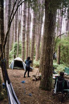 #inthewood #camping #hammock