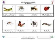 ESTOS LOCOS BAJITOS: FICHAS DEL PROYECTO LOS BICHOS Teaching Kids, Bee, Montessori, Homeschooling, Spirit, Party, Happy, Home, Insect Activities