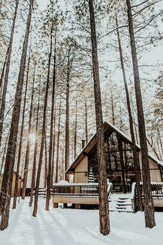 Arizona's Best Cabin Rentals