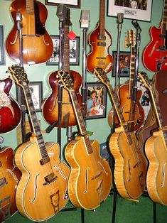 Hofner Paul's Collection