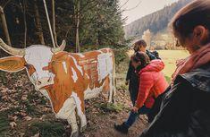 #erlebnisweg #klimawandeln #Klimawandel #erlebniswegklimawandeln #naturerlebnis #themenweg #naturerlebnis #Familie #Kinder #wandern #spaß #Erlebnis #naturpark #muerzeroberland #naturparkmuerzeroberland #visitmuerzeroberland #visitsteiermark #visithochsteiermark Cowboy Hats, Hiking