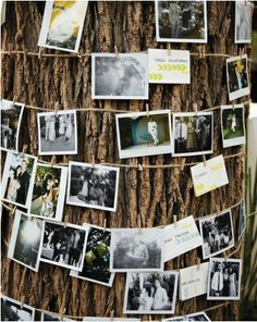 DIY Party Idea - Love this for a shower or aniversary party outside!