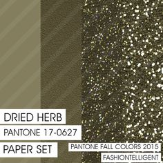 Glitter&Plain PAPER set Dried Herb PANTONE by Fashiontelligent