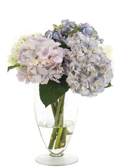 Natural Decorations, Inc. - Hydrangea Pale Blue Lavender, Glass Footed