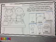https://www.teacherspayteachers.com/Product/Living-Non-Living-Print-Play-Pack-1424371