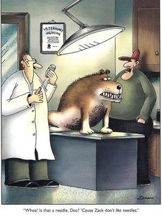 Zack the dog at the vet's office. Funny Cartoon Memes, Cartoon Dog, Cartoon Images, Funny Quotes, Gary Larson Comics, Gary Larson Cartoons, Far Side Cartoons, Far Side Comics, Funny Times