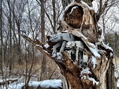 redandjonny: An AT-AT nest
