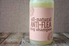 All-Natural Anti-Flea Dog Shampoo - Naturally Mindful