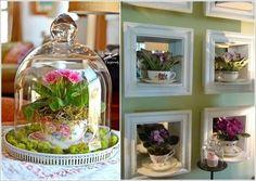 10+ Ideias Criativas para Expor as Plantas dentro de sua Casa