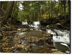 "Sold a stretched canvas print of ""Peaceful Flowing Falls"" on www.rollosphotos.com thanks to a collector from Avoca, PA!   http://rollosphotos.com/saleannouncement.html?id=4bec724739b76af986e99e7f0e369647"
