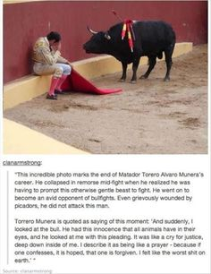 Random Pictures Of The Day – 60 Pics: Animal Rights, Bull Fights, Animal Cruelty Quotes, Faith In Humanity Restored, Animal Abuse, Anti Bullfighting, Ferdinand The Bull
