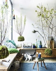 35 Creative Hanging Plant Projects for Scandinavian Style. Signs close to the plants usually offer relevant quotations. Like a lot of the plants on this list, you also will need to be on the lookout f. Interior Plants, Interior And Exterior, Home Interior, Hanging Plants, Indoor Plants, Indoor Gardening, Air Plants, Organic Gardening, Home Tumblr