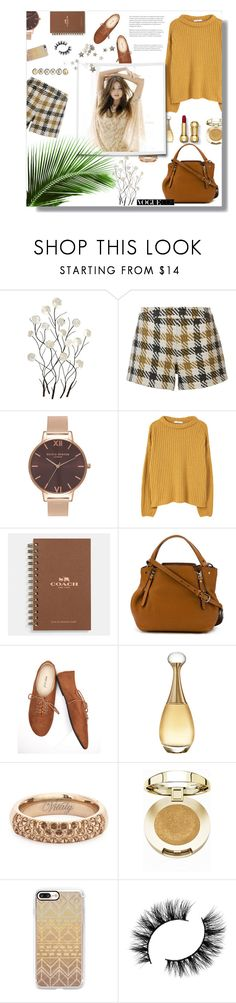 """Untitled #149"" by madhu-147 ❤ liked on Polyvore featuring Universal Lighting and Decor, Alice + Olivia, Olivia Burton, MANGO, Coach, Burberry, Wet Seal, Christian Dior, Vitaly and Diane Von Furstenberg"