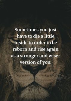 #quotes #quote #life #selfimprove #reborn #stronge #wise