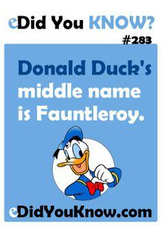 Disney Facts