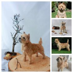 needle felted cairn terrier by adore62,