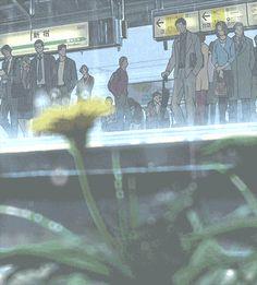 scenery mystuffs anime scenery anime edit the garden of words Kotonoha no Niwa baka:gif Illustrations, Illustration Art, Anime Manga, Anime Art, Rain Gif, The Garden Of Words, Anime Places, Gif Collection, Image Manga
