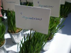 Last Petal fresh grass place cards with Barbara's Brides at a Texas ranch wedding
