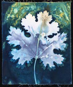 Experiments in wet cyanotype, part 2 Sun Prints, Nature Prints, Leaf Prints, Alternative Photography, Cyanotype, Encaustic Painting, How To Dye Fabric, Painting Techniques, Textile Art
