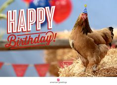 Chicken Playing Piano Birthday Song Is One Of Thousands American Greetings Cards You Can Personalize Share And Send To Your Friends Family