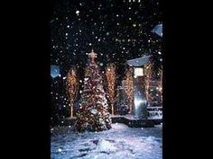 a beautiful Christmas tree amongst a winter wonderland. Christmas Scenes, Noel Christmas, Merry Little Christmas, All Things Christmas, Winter Christmas, Christmas Lights, Christmas Decorations, Xmas, Christmas Music