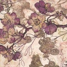 Image result for zyla colors for dusky summer women