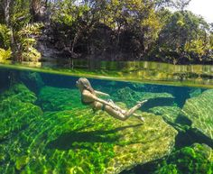 #GoProGirl @theblondeabroad dives into @gopromx from #RiveraMaya in #Mexico! She's sharing her favorite #GoPro shots from her travels south of the border. Tune into @gopromx for an awesome giveaway! by gopro