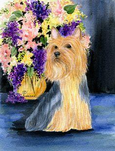 Silky Terrier 2-Sided Garden Flag