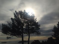 Solformørkelse 2015 Rakkestadstranda