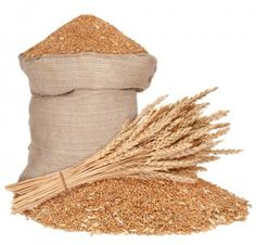 7 Great Ways to Use Wheat WITHOUT a Wheat Grinder » The Homestead Survival