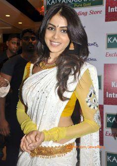 Chikan Saree and net blouse