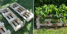 How to Make Strawberry Pallet Planter - DIY & Crafts - Handimania #Photography