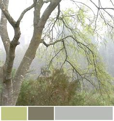 pretty color palette by brynalexandra, via Flickr  colors for office/guest room?