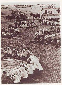 Українське село, обід в полі, 1934 рік., Ukraine, from Iryna