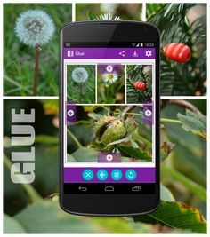 Glue, the Android App for gluing photos together.  http://goo.gl/e7YvFQ