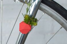 Planta de vestir - bike! Wearable Planter by Colleen Jordan